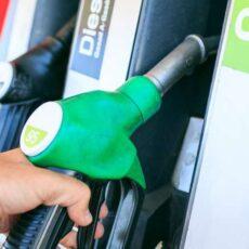rapidfuel elegir gasolina